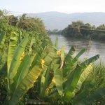 Вид на реку Ла Нга