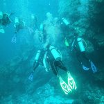 DIVERS LEAD THE WAY IN THE BLUE SEA