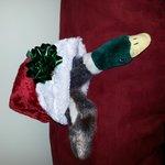 New Year Mallard and his Santa hat