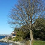 Woods Coffee, Boulevard Park, Bellingham, WA