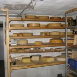 The cheese section...