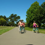 Cycling in Hagley Park