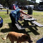 Picnic tables available on site & dogs allowed