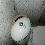Bathroom Flush
