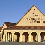 Les Vignerons de Mancey à Tournus