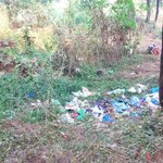 Uncontrolled dumping of non degradable wastes at beach