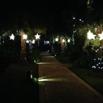 lights on the pathway for christmas
