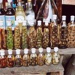 Liquori di riso aromatizzati con animali del luogo, sulle rive del Nam Kane