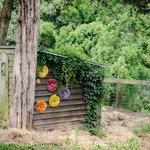 Even the chicken coop has flowers!