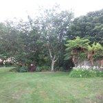 nice landscaped garden