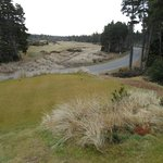 3rd hole at Bandon Trails