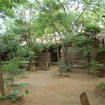 Treatment area..
