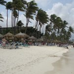 One of the many wind swept beaches on the Western side of Aruba.