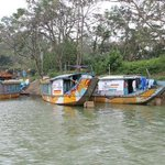 boats on the perfume river Hue