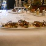 Anguille et poulpe sauvages grillés