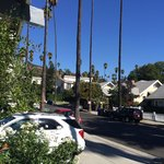 View from Dresden's porch to Runyon Canyon
