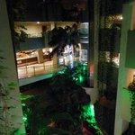 jardin interior y ascensor panorámico