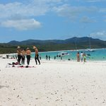 Whitehaven beach is the awesome ...included Buffet lunch !
