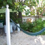 the hammock to nap or read in