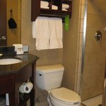 Hampton Inn Traverse City -- bath