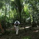 tour gaia - the absolute best tours in the mayan forest