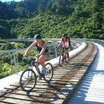 Ohakune Old Coach Road transport and bike rental.