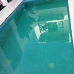 Piscina agua verde