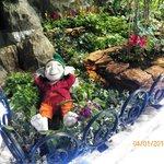 jardin  encantado