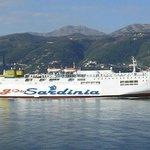 traghetto Goinsardinia