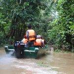 genom regnskogen