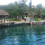 Dolphin Discovery - Puerto Adventuras