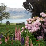 View of  Lake Hawea from the main house's lovely garden