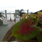 Lake Peten view from veranda (rear)