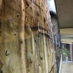 The impressive rock wall behind all the rooms