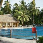 Swimming Pool and Pool Bar