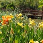 Jardines y estanque