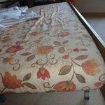 Das Sofa, was bei einer 4-köpfigen Familie zum Bett ausgezogen wird hat unansehnliche Flecken un