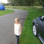 my daughter feeding the ducks