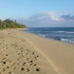 plage devant les bungalow