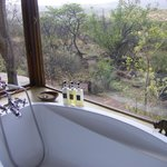 The welcoming bath overlooking the bush