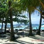 Blue Mango Beachfront Pic 3