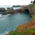 One of the many coves