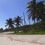 Beach in front of Ixchel