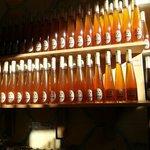 honey selection