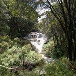 hot water falls