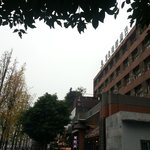 南都商務酒店  |  武侯區人民南路四段20號, 成都, 四川省