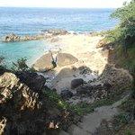 a beach nearby