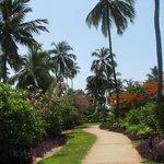 Fairmont Zanzibar Foto