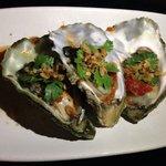 Amazing fresh oyster