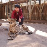 Touch a cheetah for an extra 200 rand.